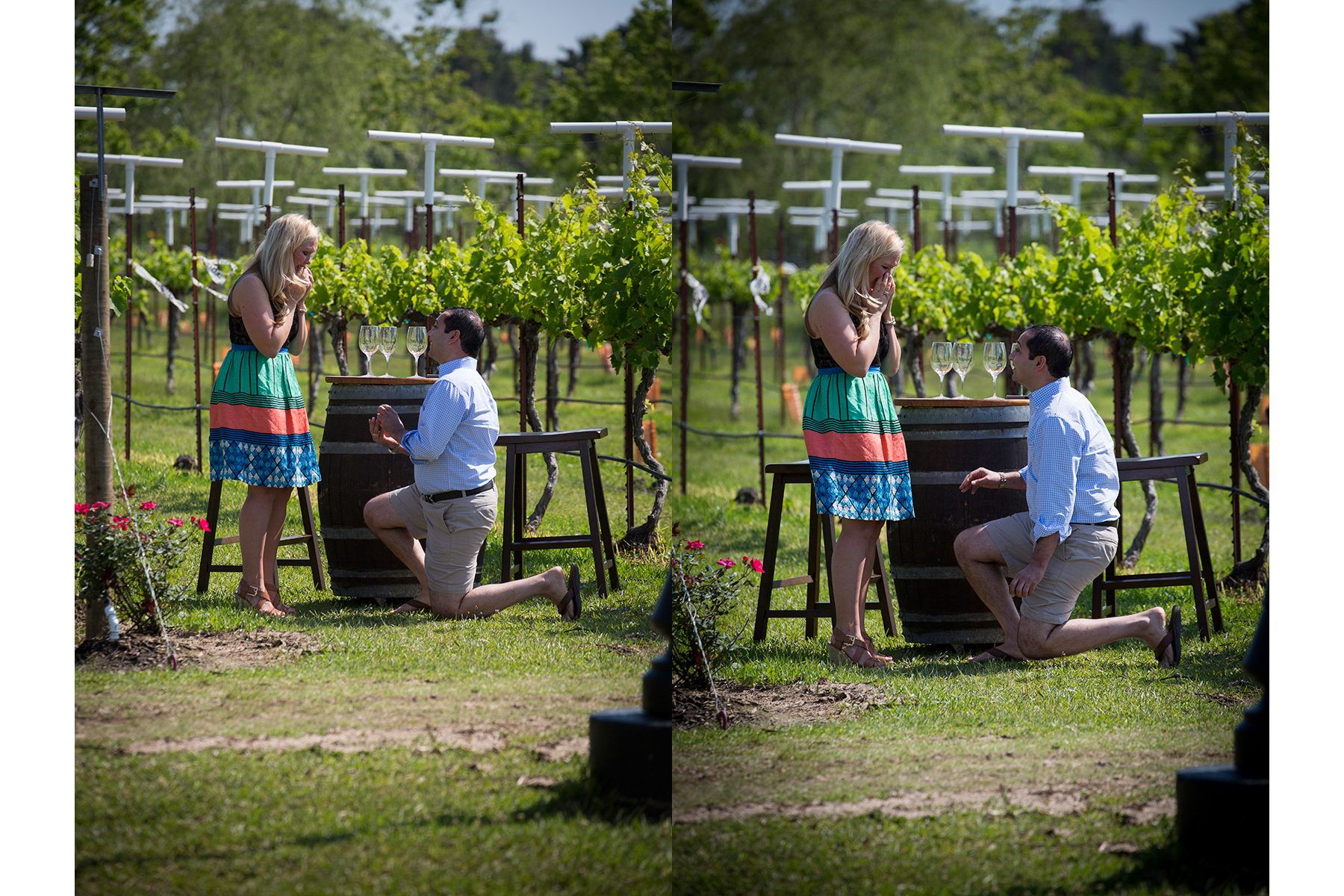 Proposal Photography Houston