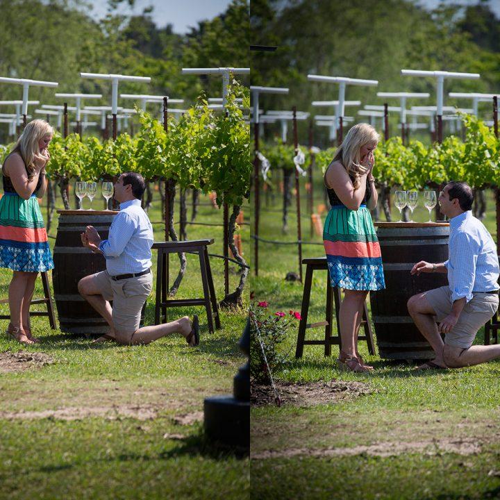 Proposal Photography Houston