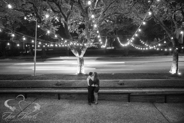 Hermann Park Proposal - Two Hearts Studios